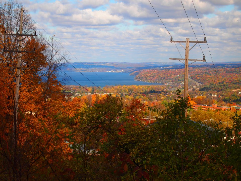 Nature_Trail_Lake_View.jpg