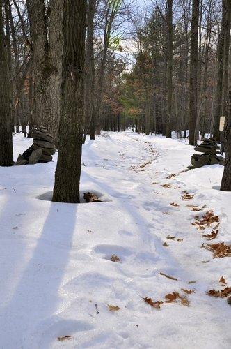 Snow_Trail_full.jpg