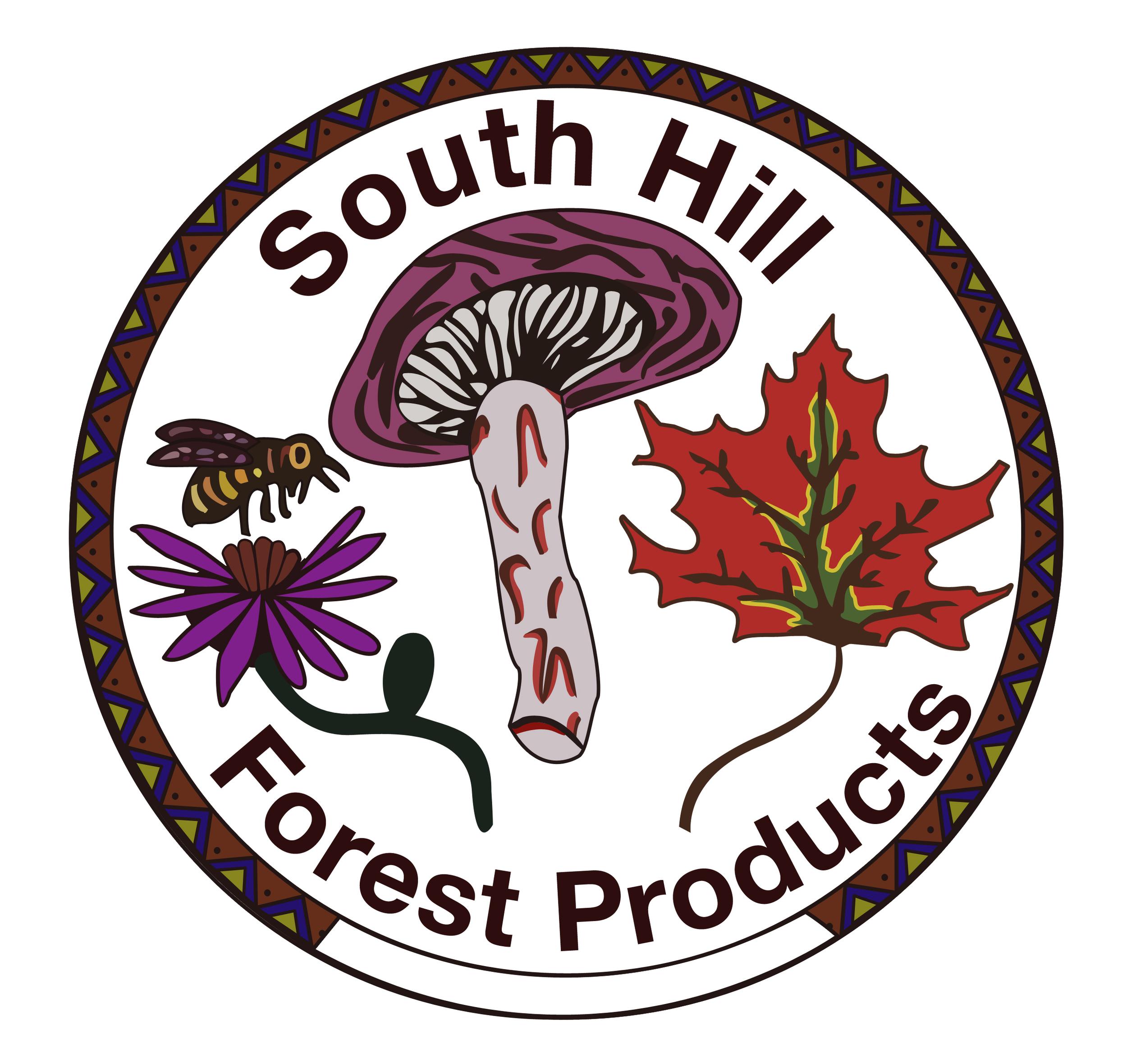 south hill logo 2.jpg
