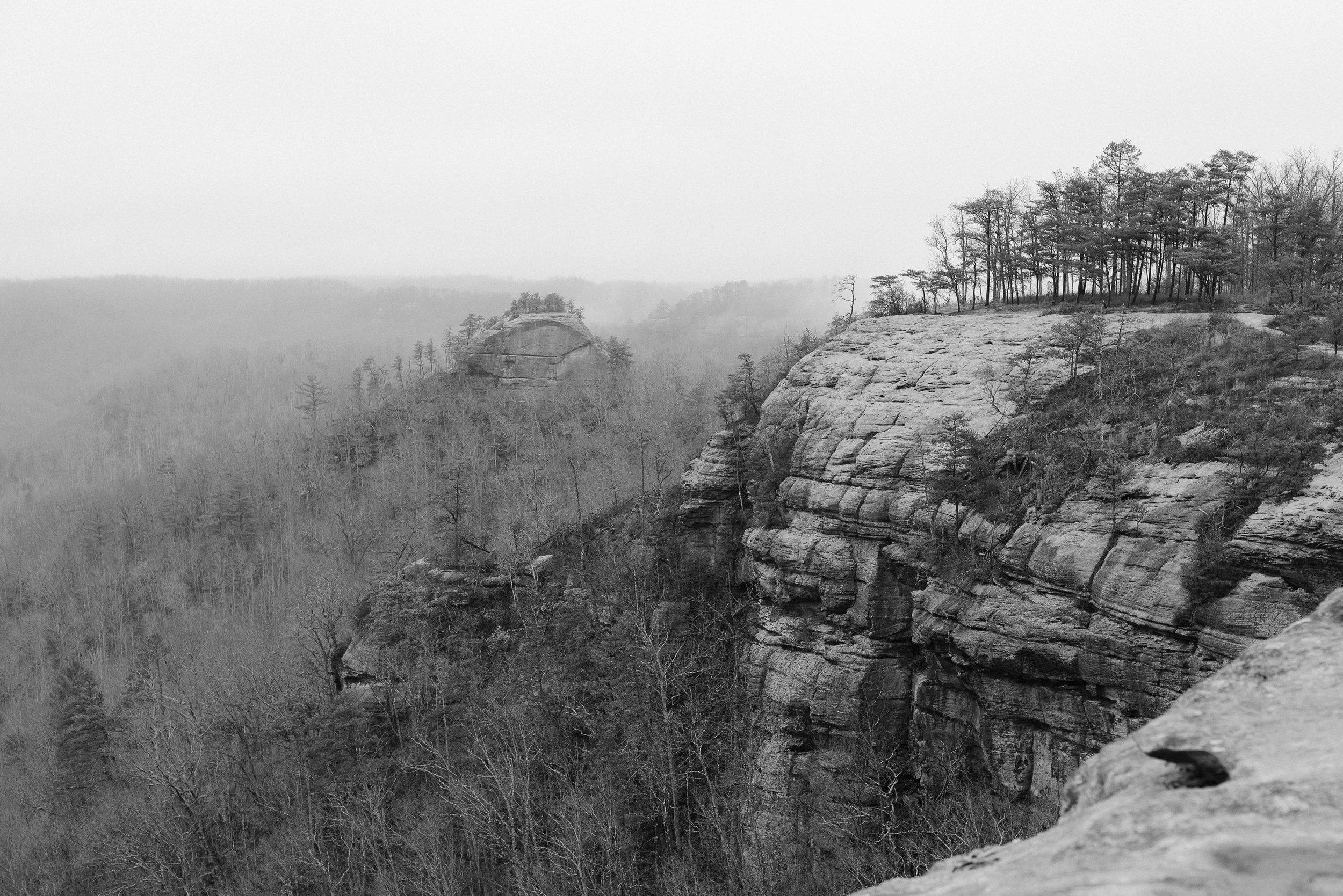 Auxier Ridge, Red River Gorge