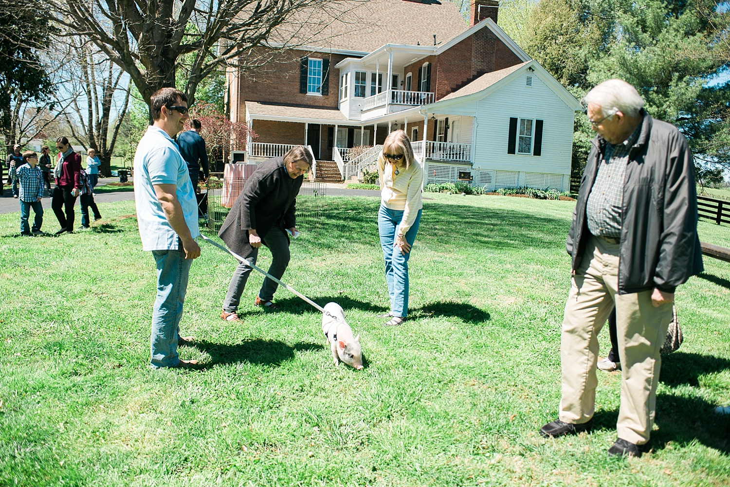 """Arnold, Warrenwood Manor's """"mascot"""", paid everyone a visit but was more interested in eating grass!"""