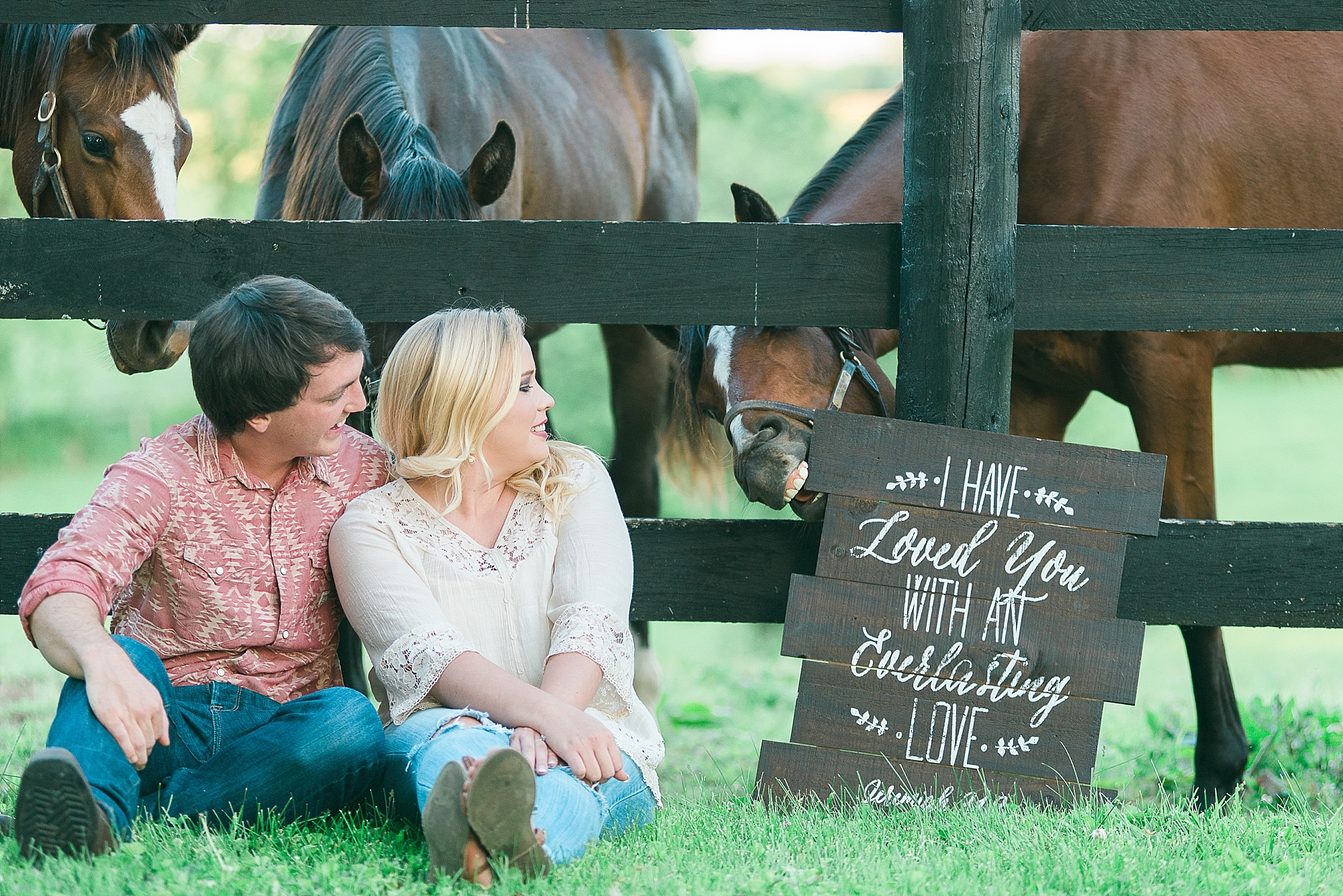 The horse thought the sign looked tasty! lol