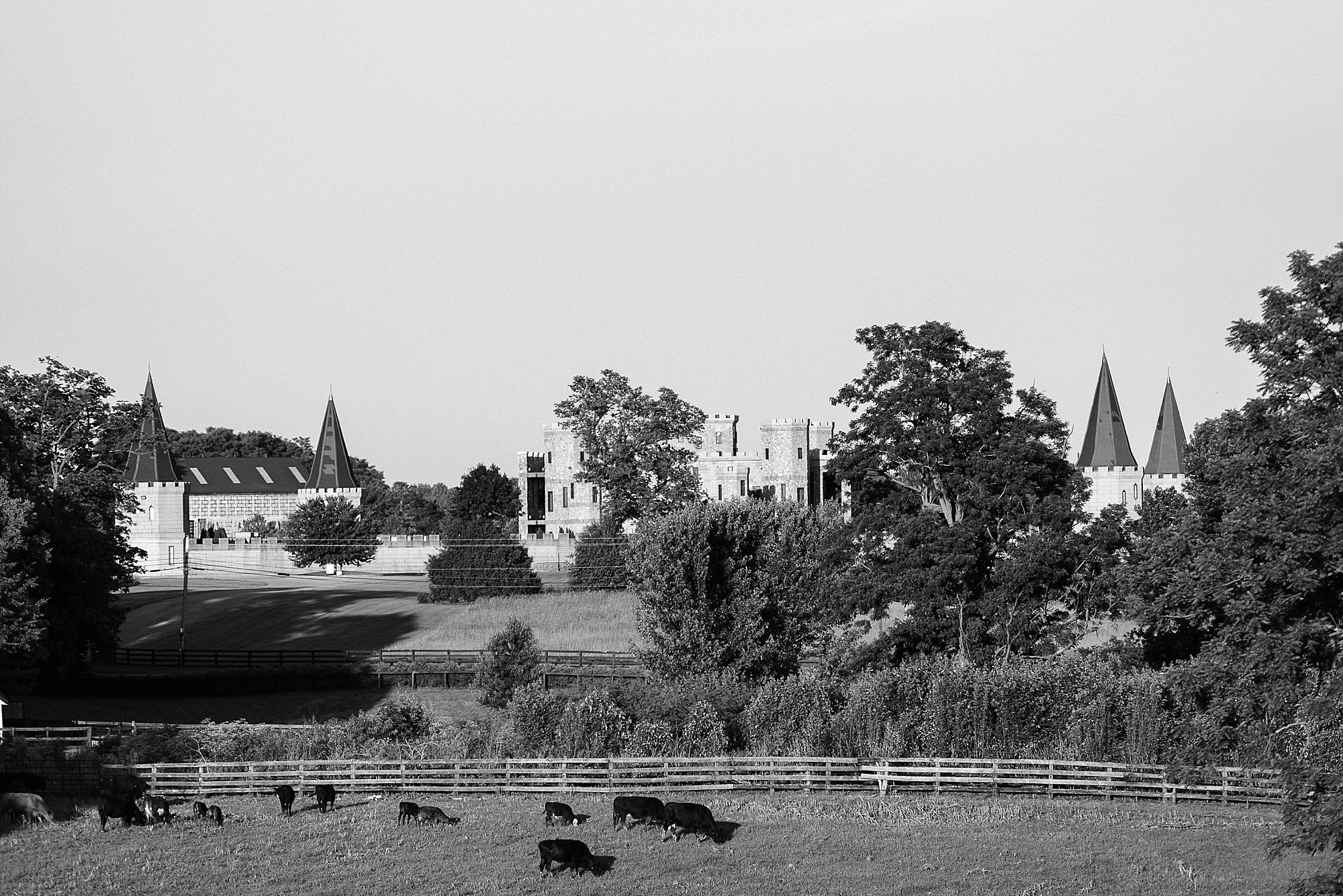castle-post-versailles-ky-photographer