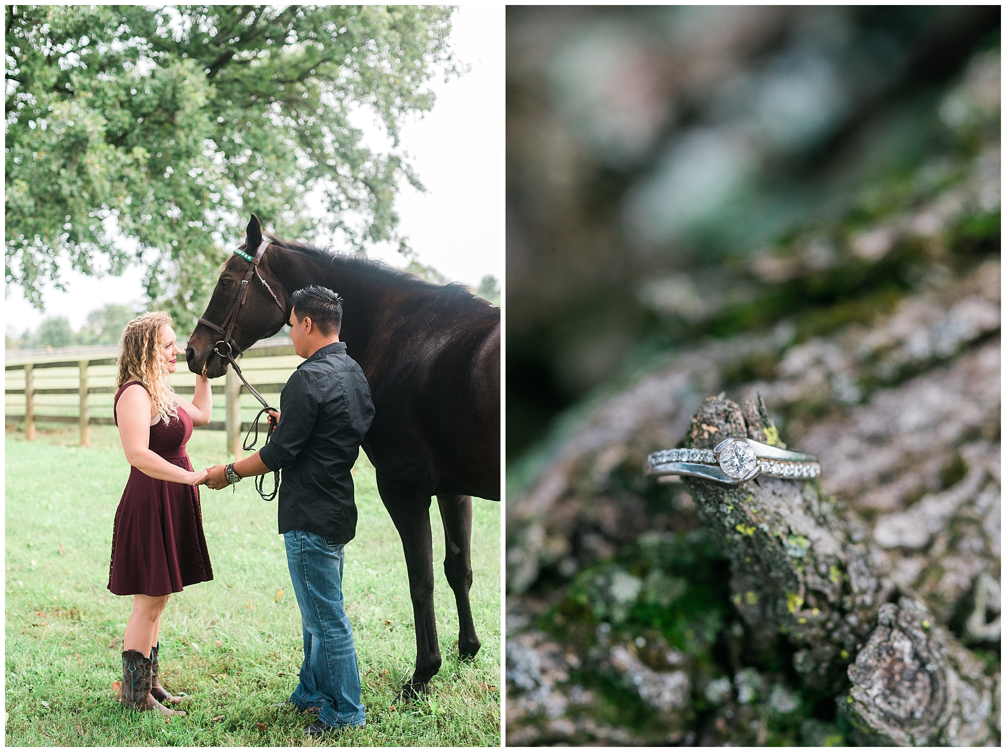 horse-farm-wedding-photos