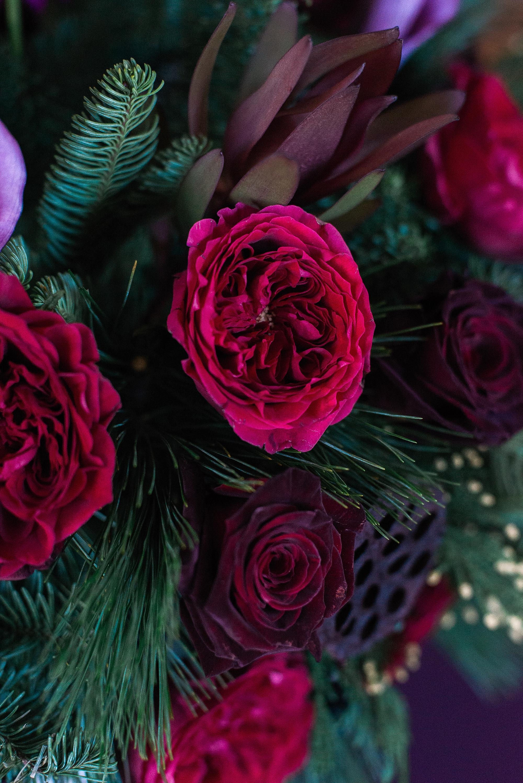 fields-in-bloom-florist