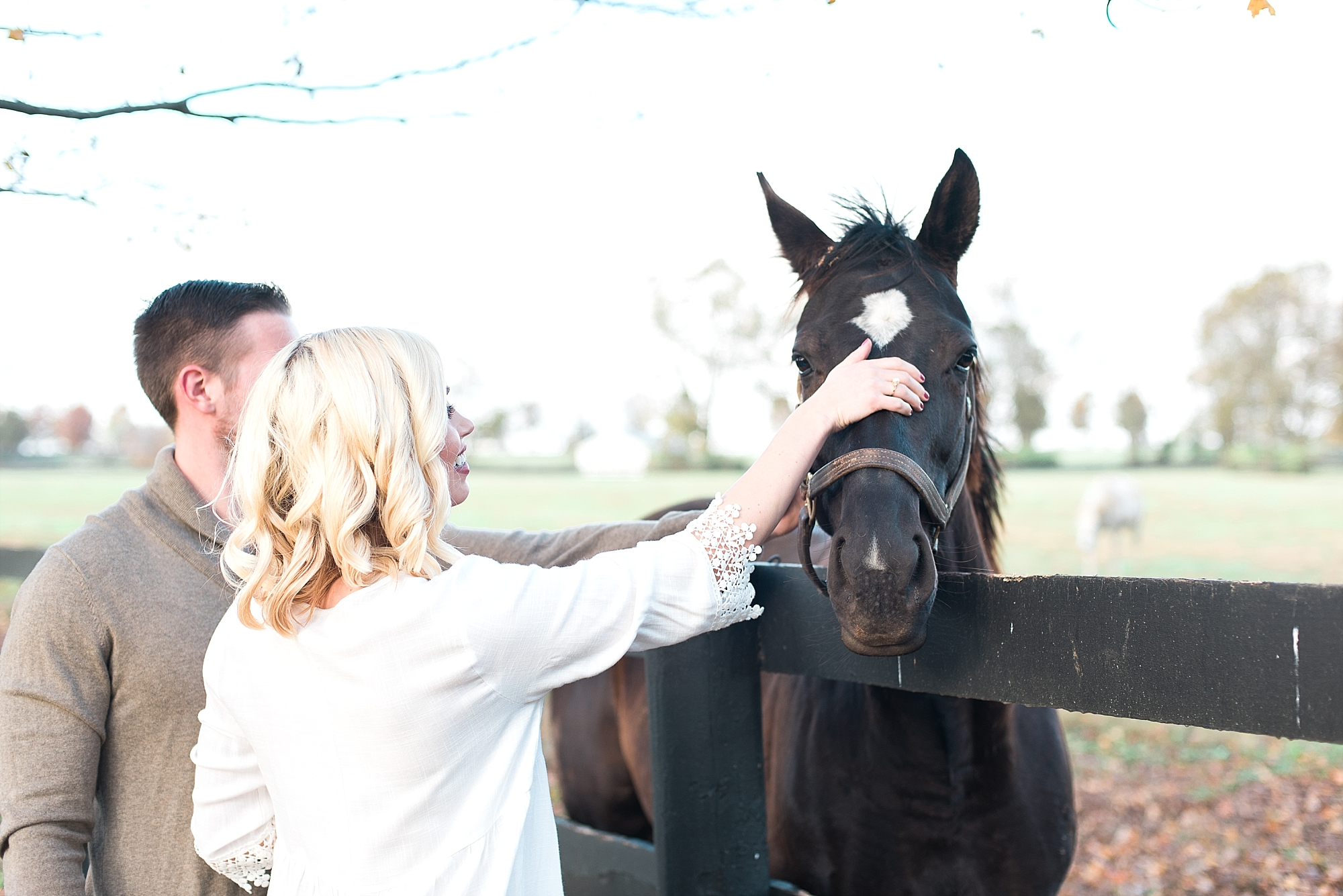 horses-engagement-pics