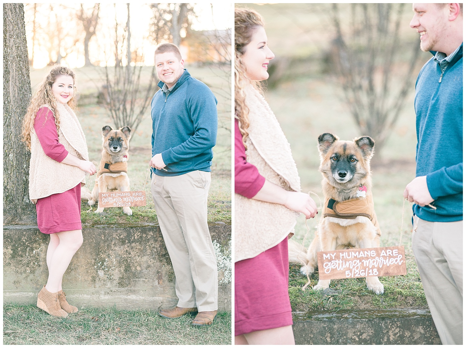 dog-save-the-date