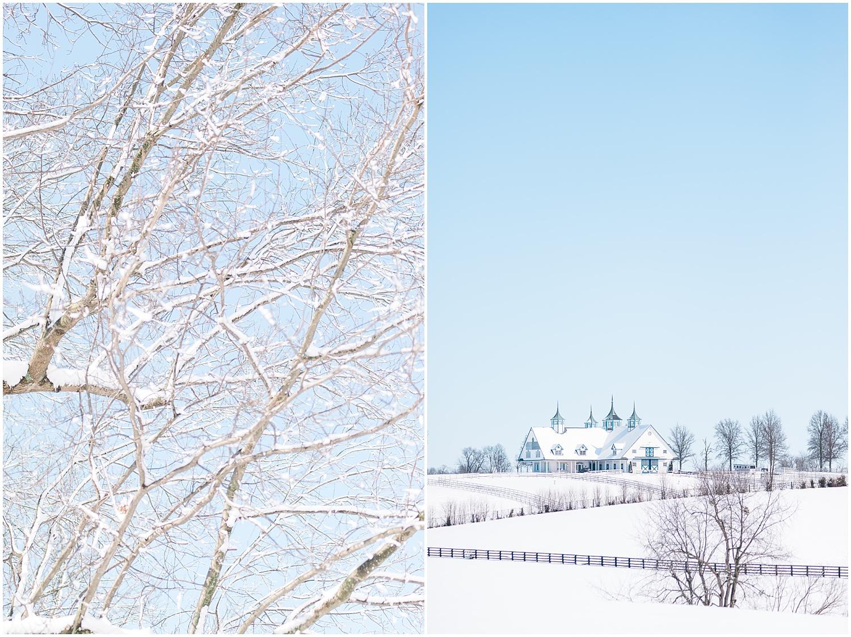 snow-day-in-lexington-ky