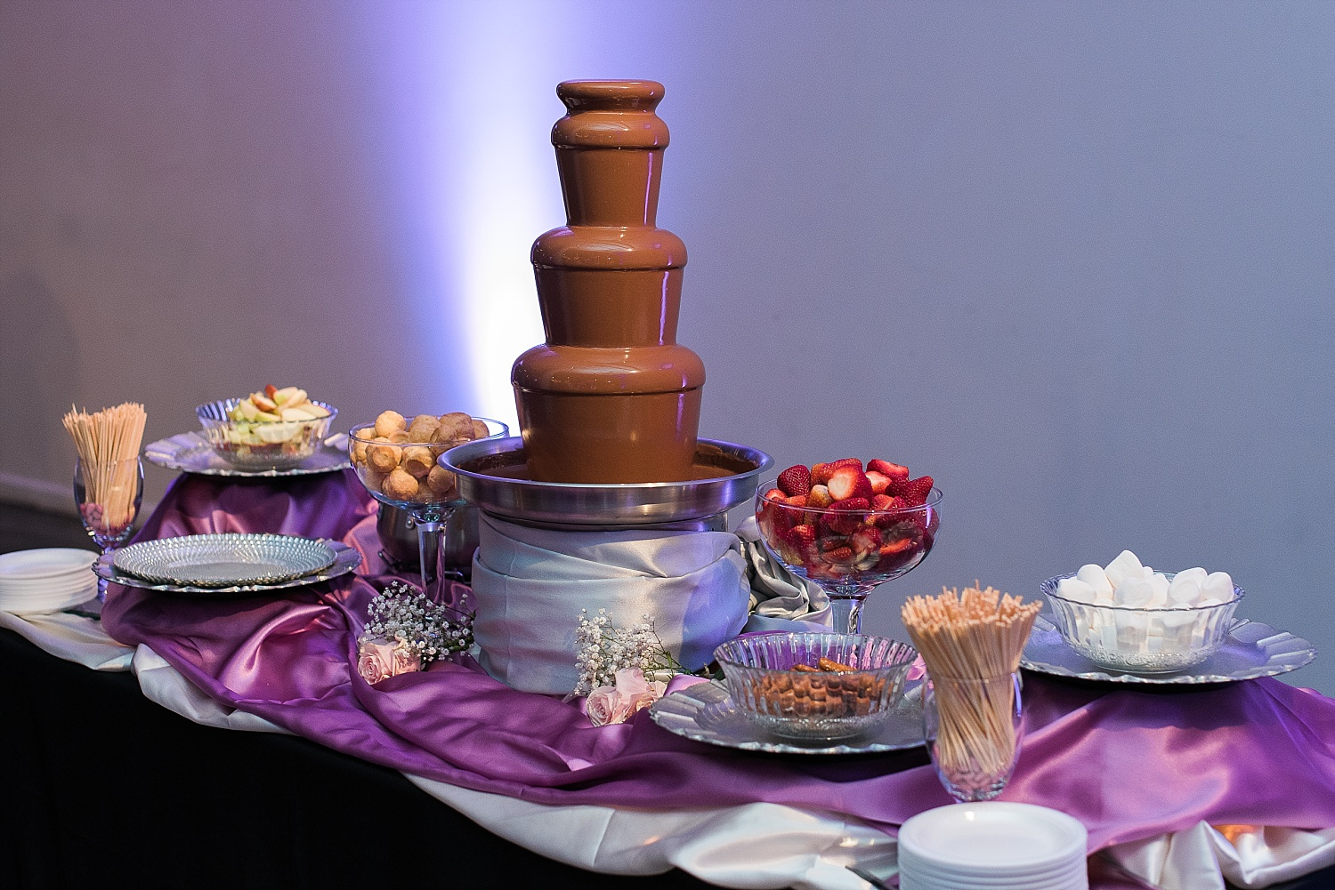 If you want a chocolate fountain, you MUST check out the Louisville Chocolate Fountain!