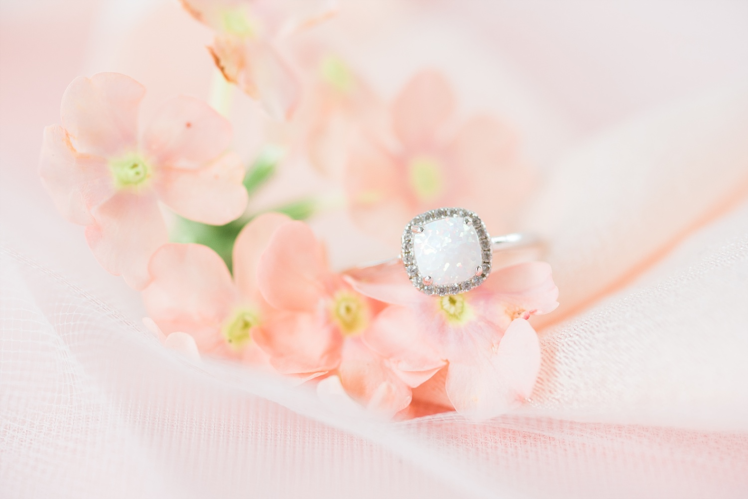 Curtis gave Amy this beautiful ring before the wedding