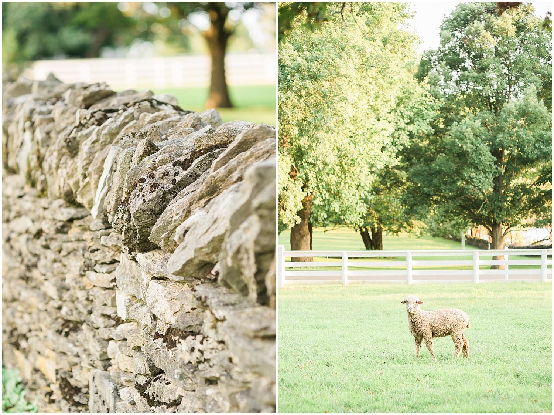 farm-country-rustic