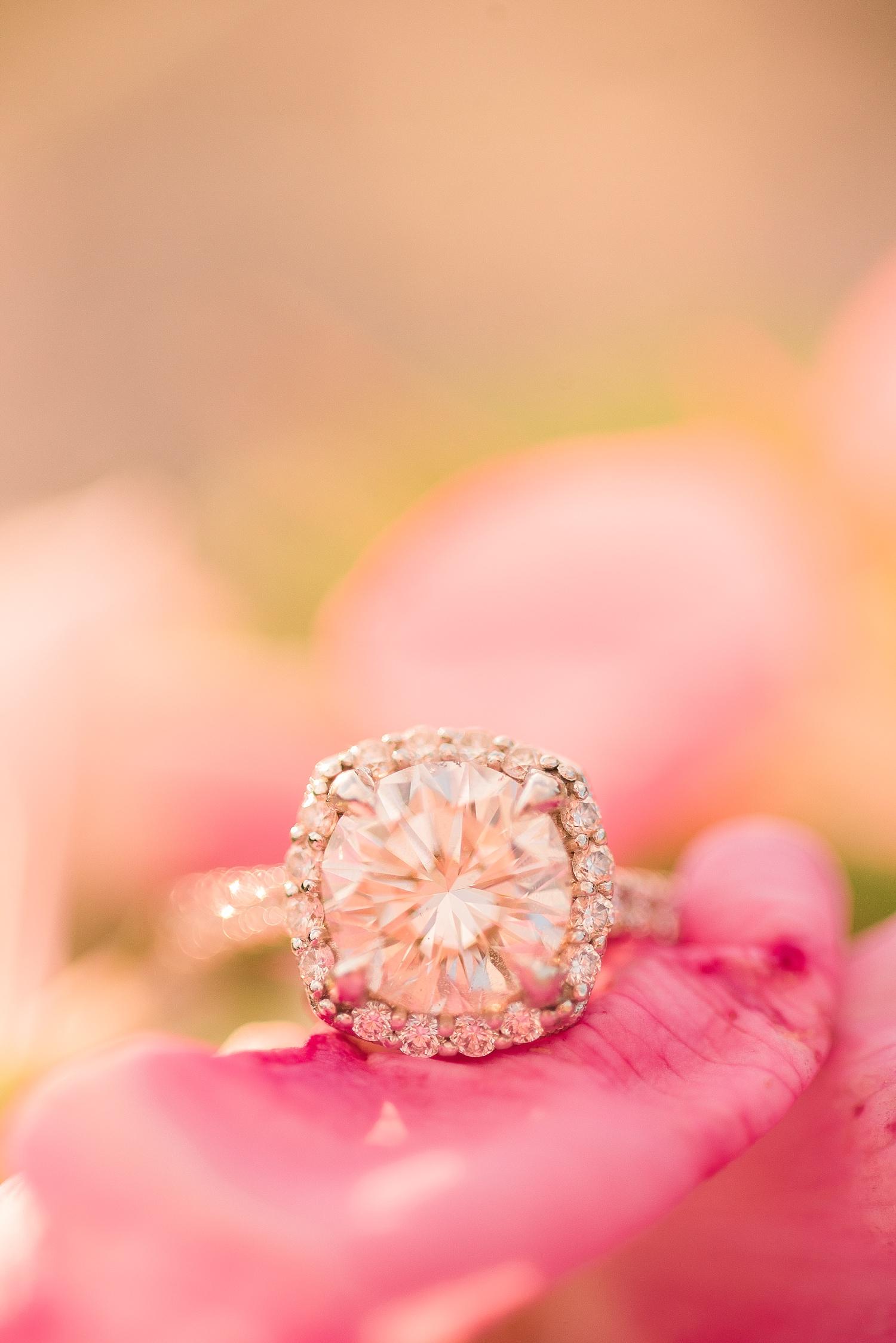 pink-flower-ring-shots