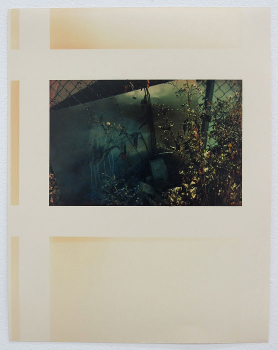 Ryan Foerster, after the garden is done , 2012, C-print,14 x 11 in