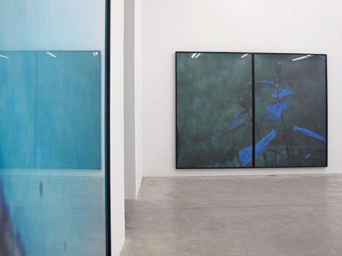 Installation view, Colin Snapp/Daniel Turner , Martos Gallery, New York, 2011