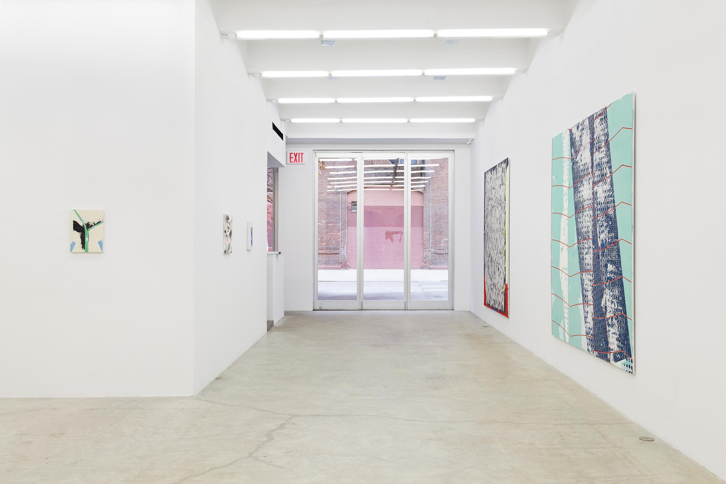 Installation view, Thick Pink, Stuffed Light, Martos Gallery, New York, 2014