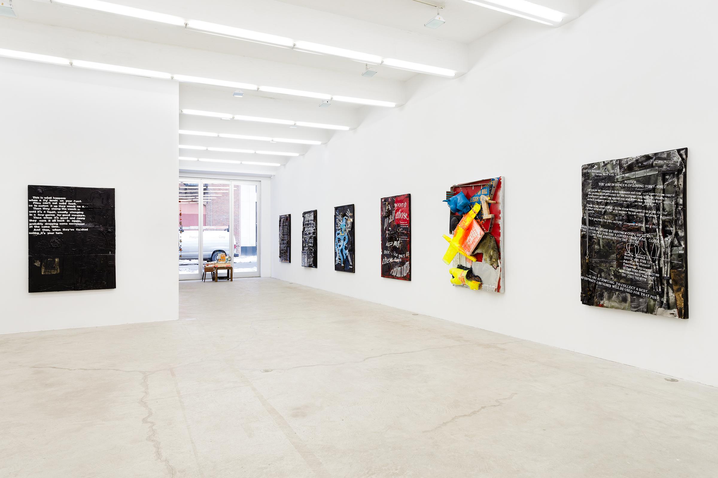Installation view, Justin Lieberman , Martos Gallery, New York,2014