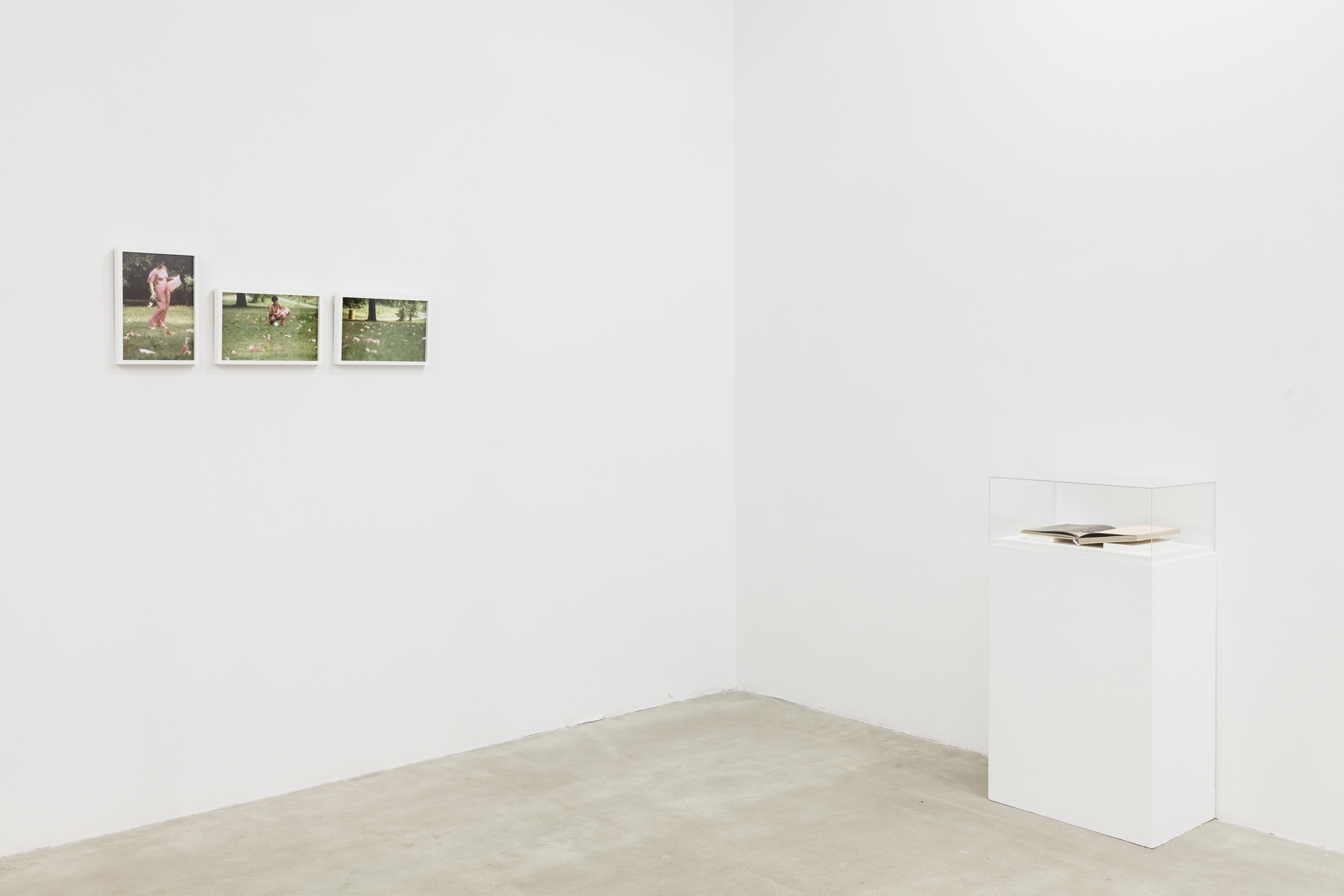 Installation view, Poor Working Conditions , Martos Gallery, New York, 2014