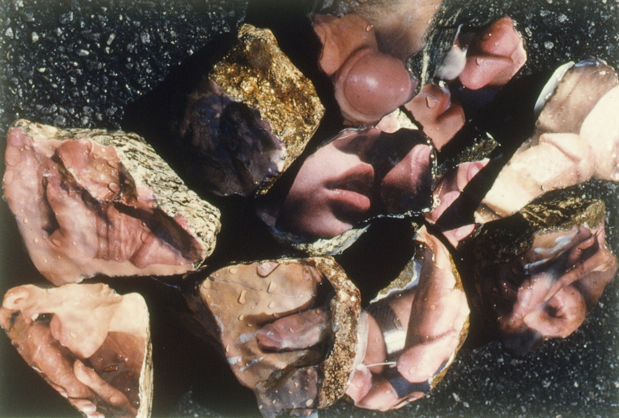 Aura Rosenberg,  Untitled (Dialectical Porn Rocks),  1989-1993, C-print, 16 x 20 in.