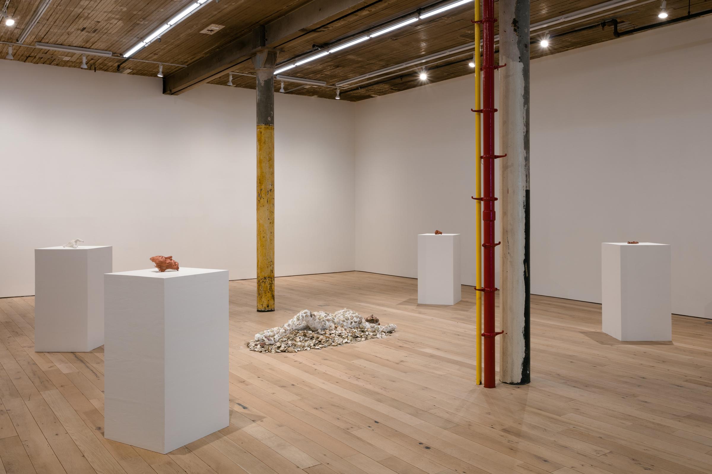 Installation view, oikos love love love, Martos Gallery, New York, 2018