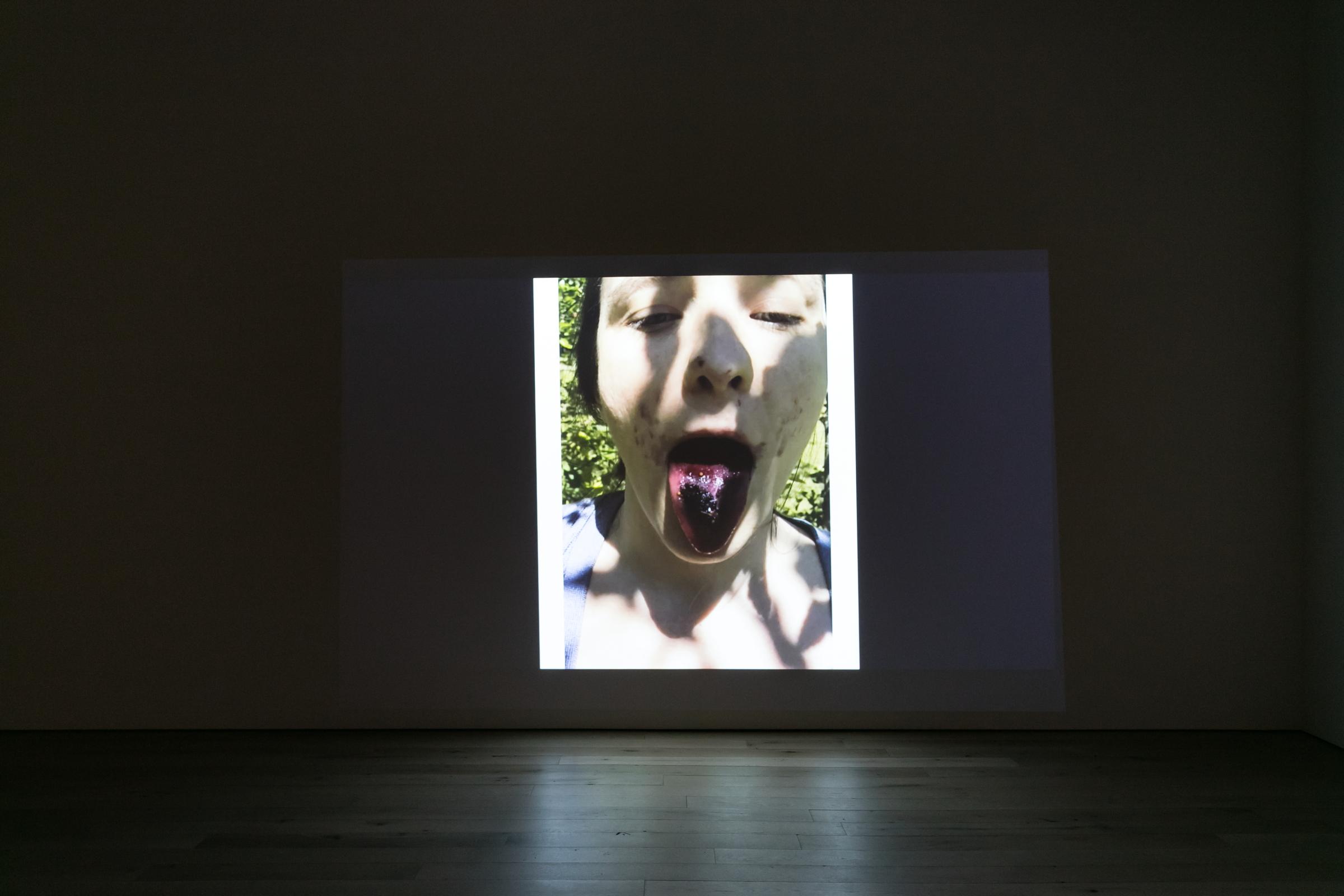 Installation view, Michel Auder,  TRUMPED,  2018, HD video, color, sound by Matthias Grübel, 8:55 min.