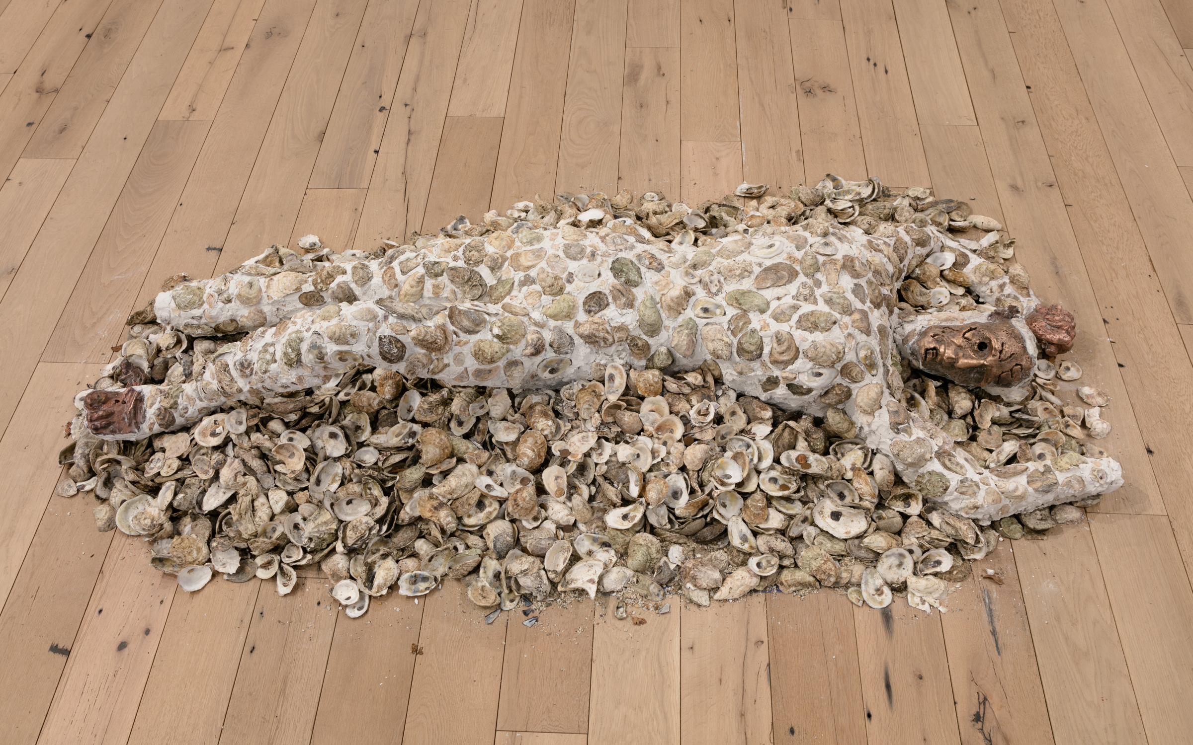 Jory Rabinovitz,  Death of Abel,  2018, tabby, melted pennies and oyster shells, dimensions variable