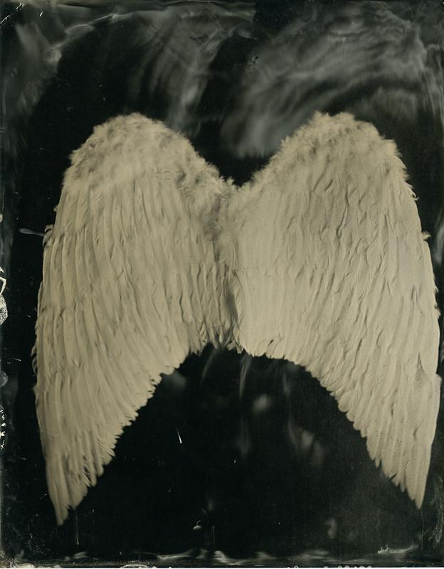 KTS_Kate Petrone_Wings, 2014.jpg