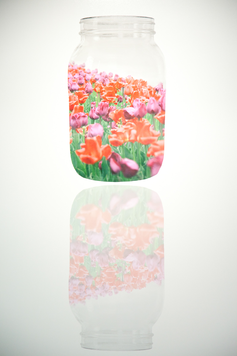 Rossa Cole_Flower Jar, 2014.jpg
