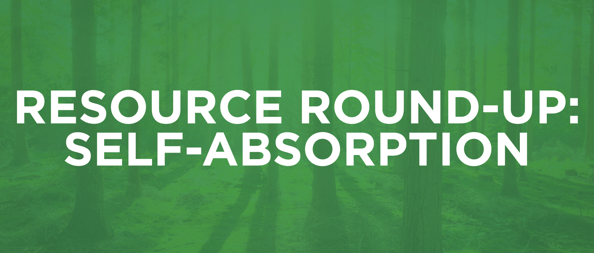 ResourceRoundup-5-SelfAbsorption.jpg