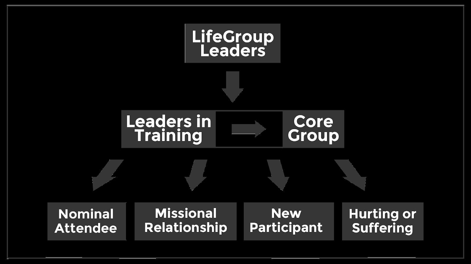 LifeGroup Organization-01-3.png