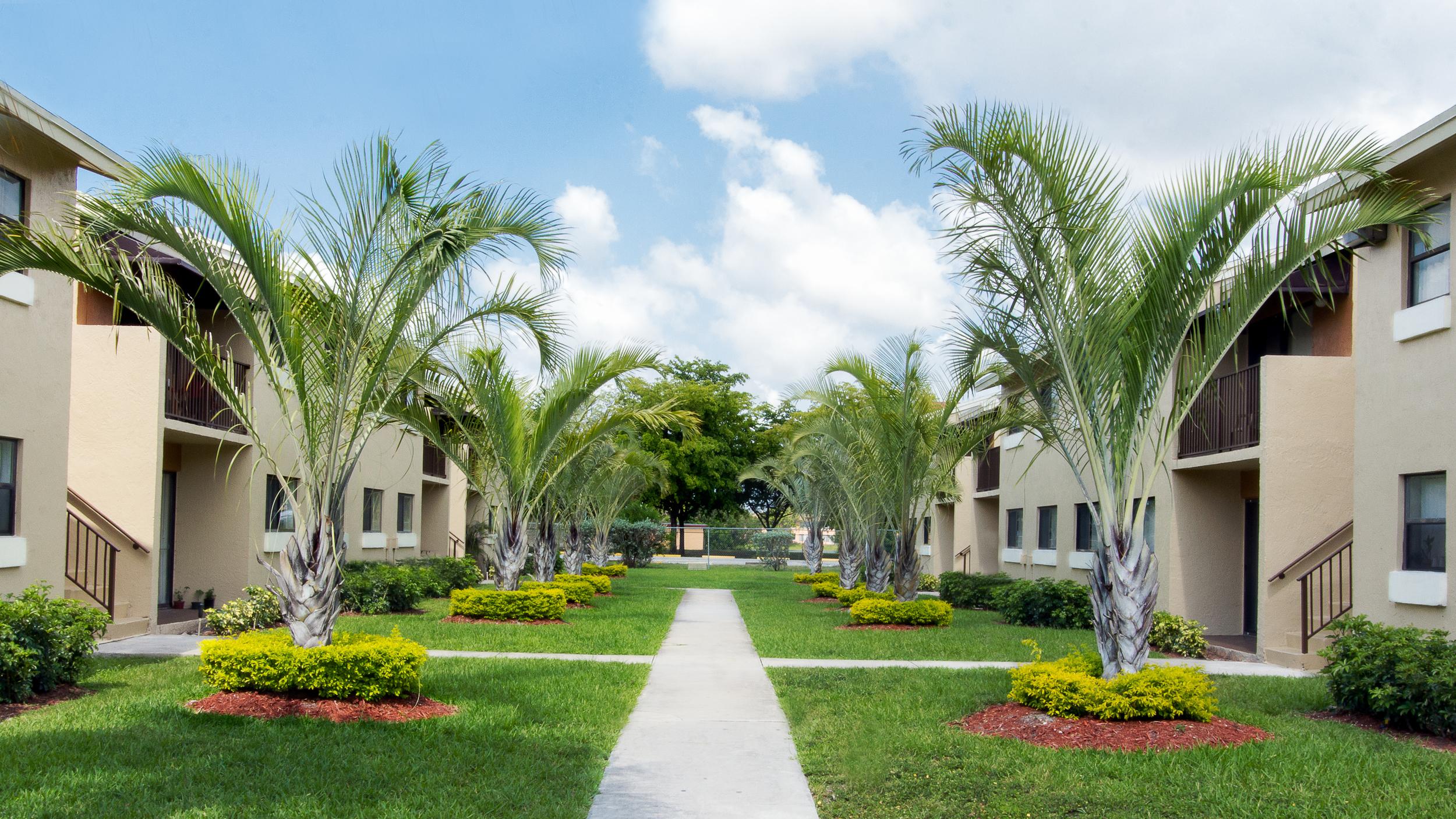 Vista Palms