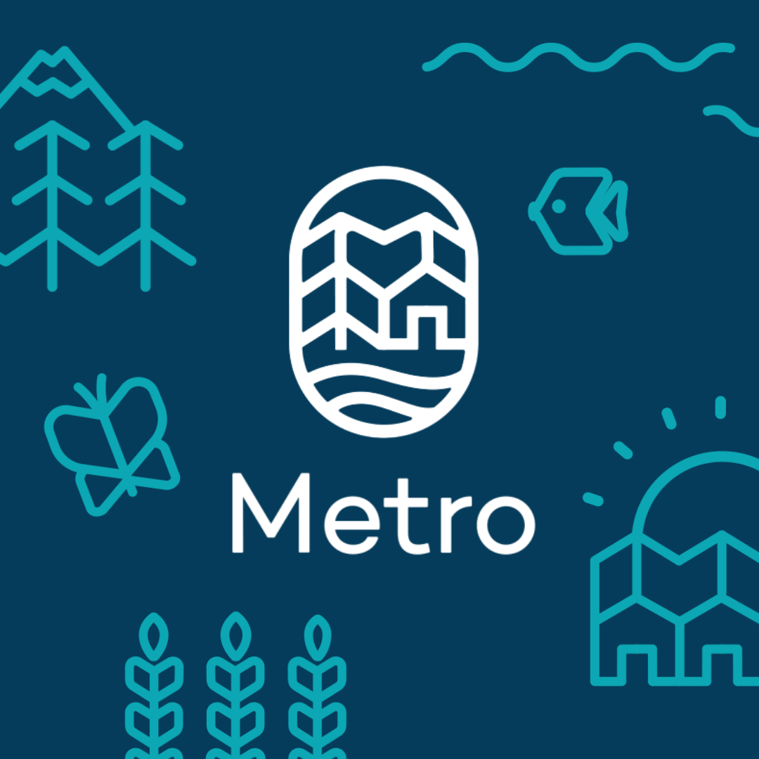 METRO  Animation