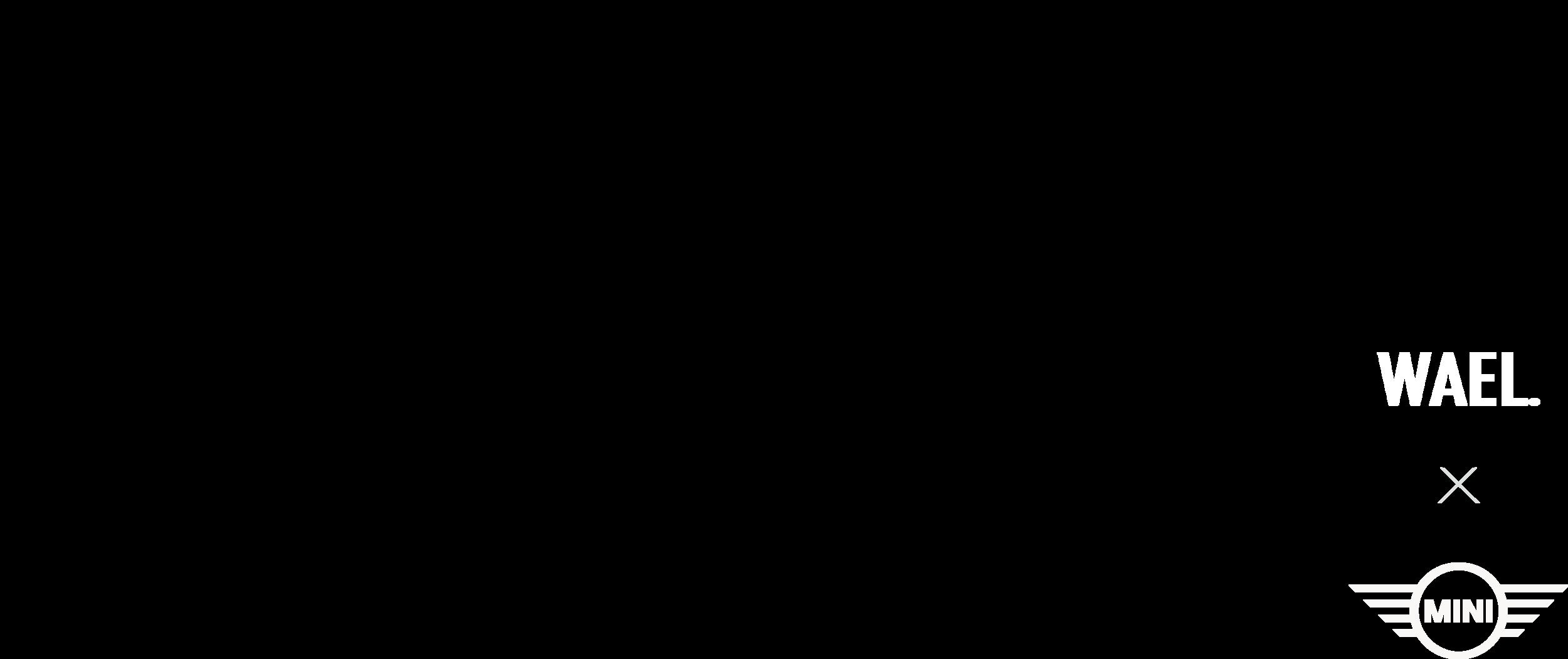 wael x mini logo