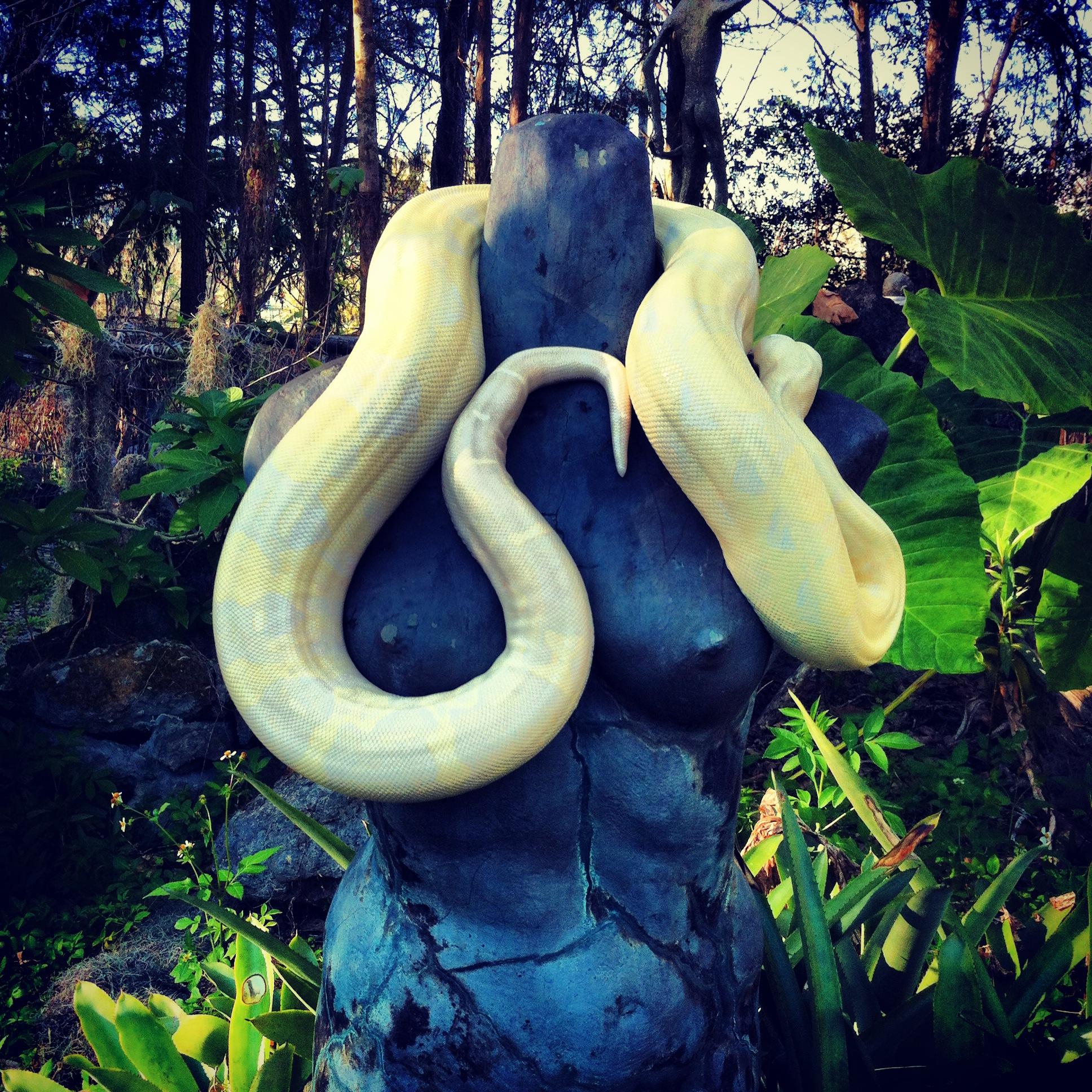 Snake Lady.jpeg