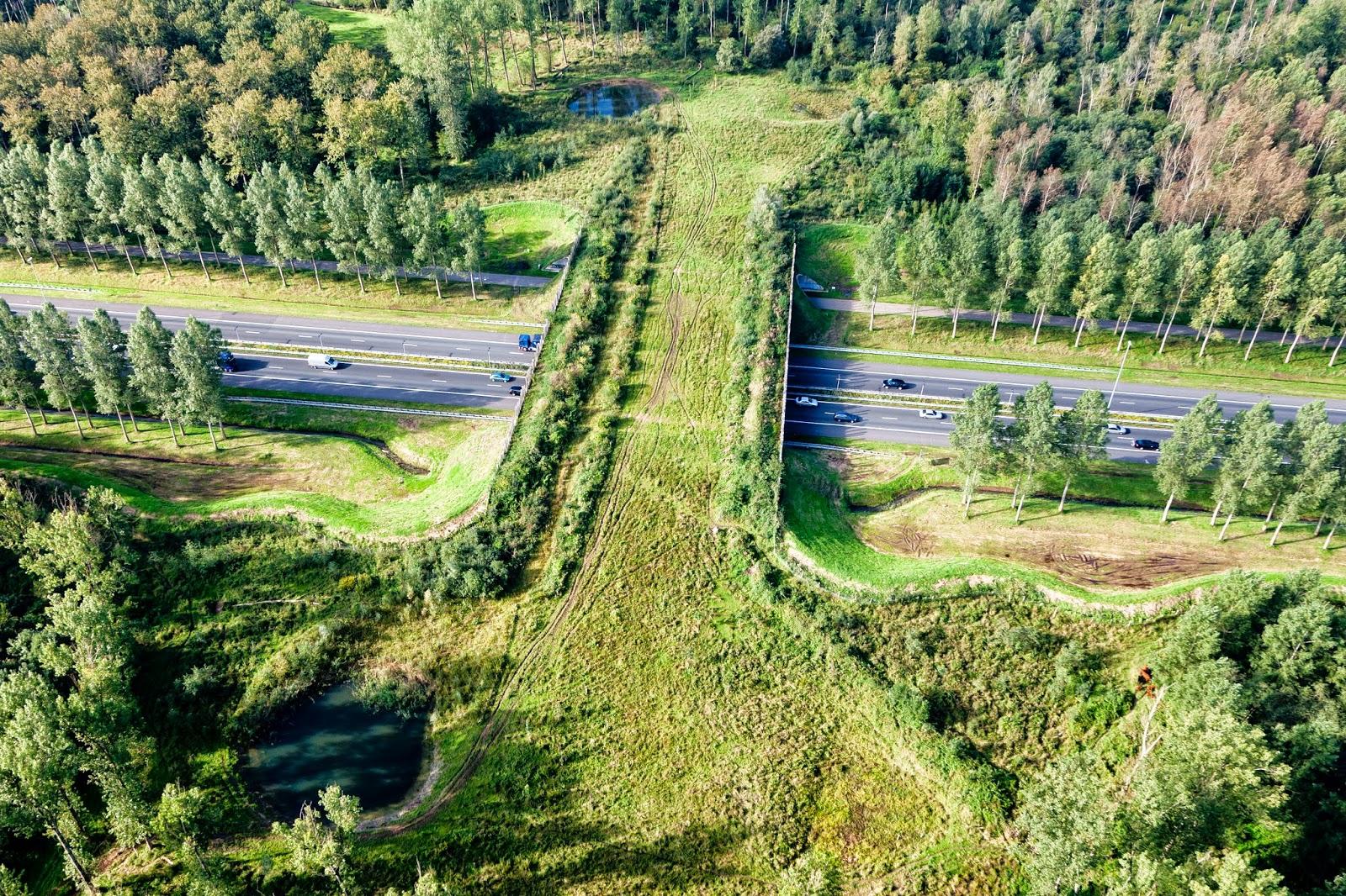 North Brabant province, Netherlands