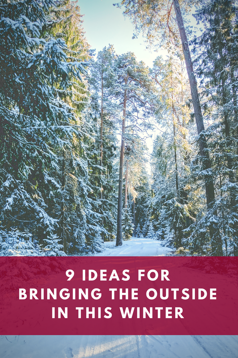 9 ideas for bringing the outside in this winter.png
