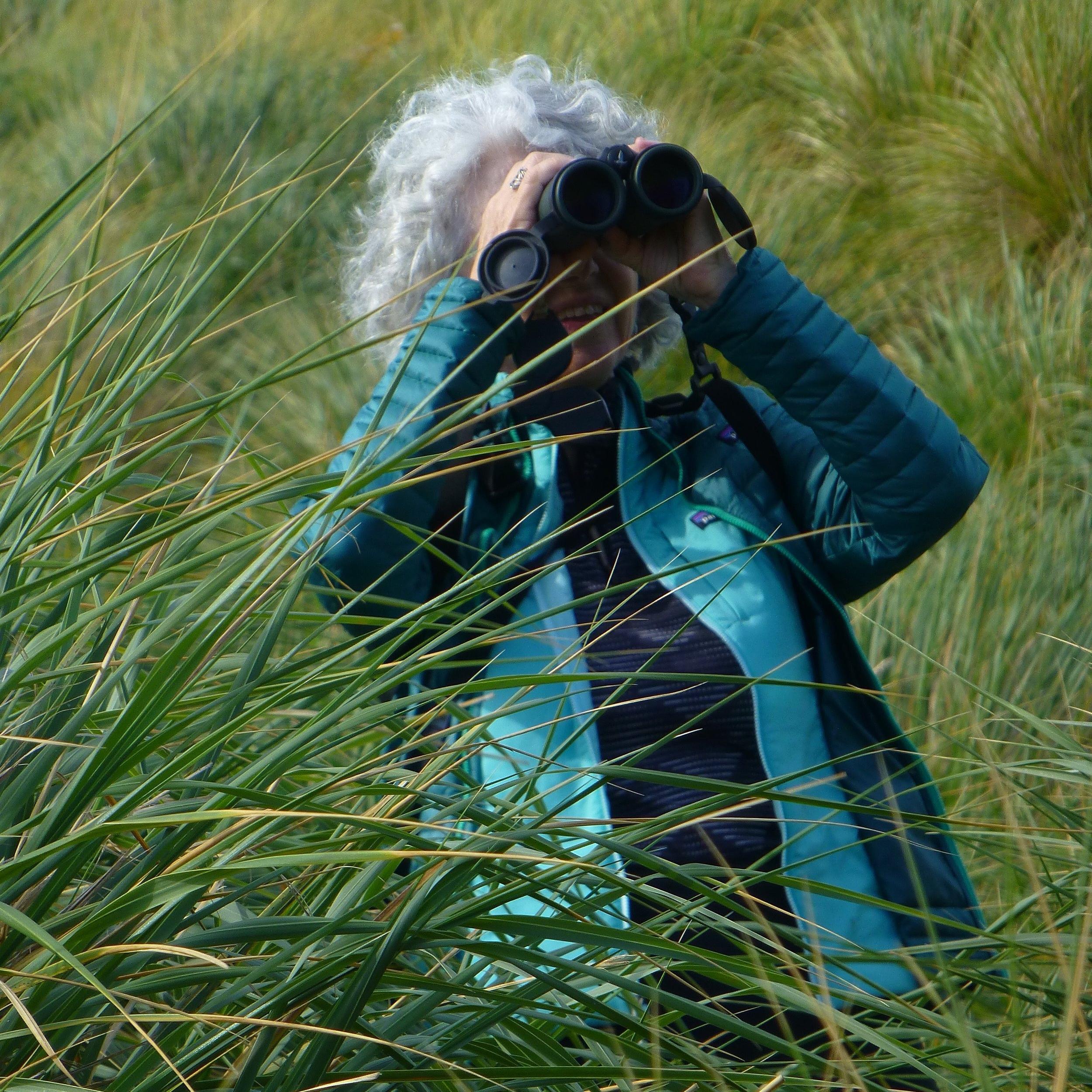 Laurie Danforth.jpg