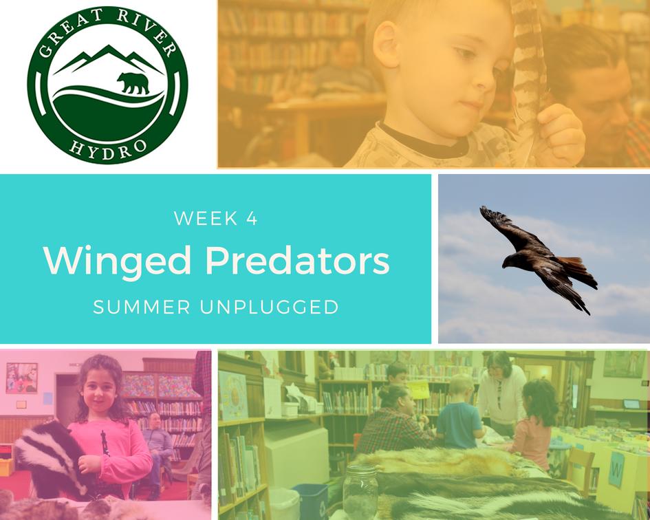 winged-predators.jpg