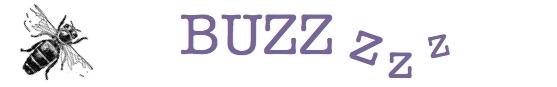 BUZZ! postcard 2017 final.jpg