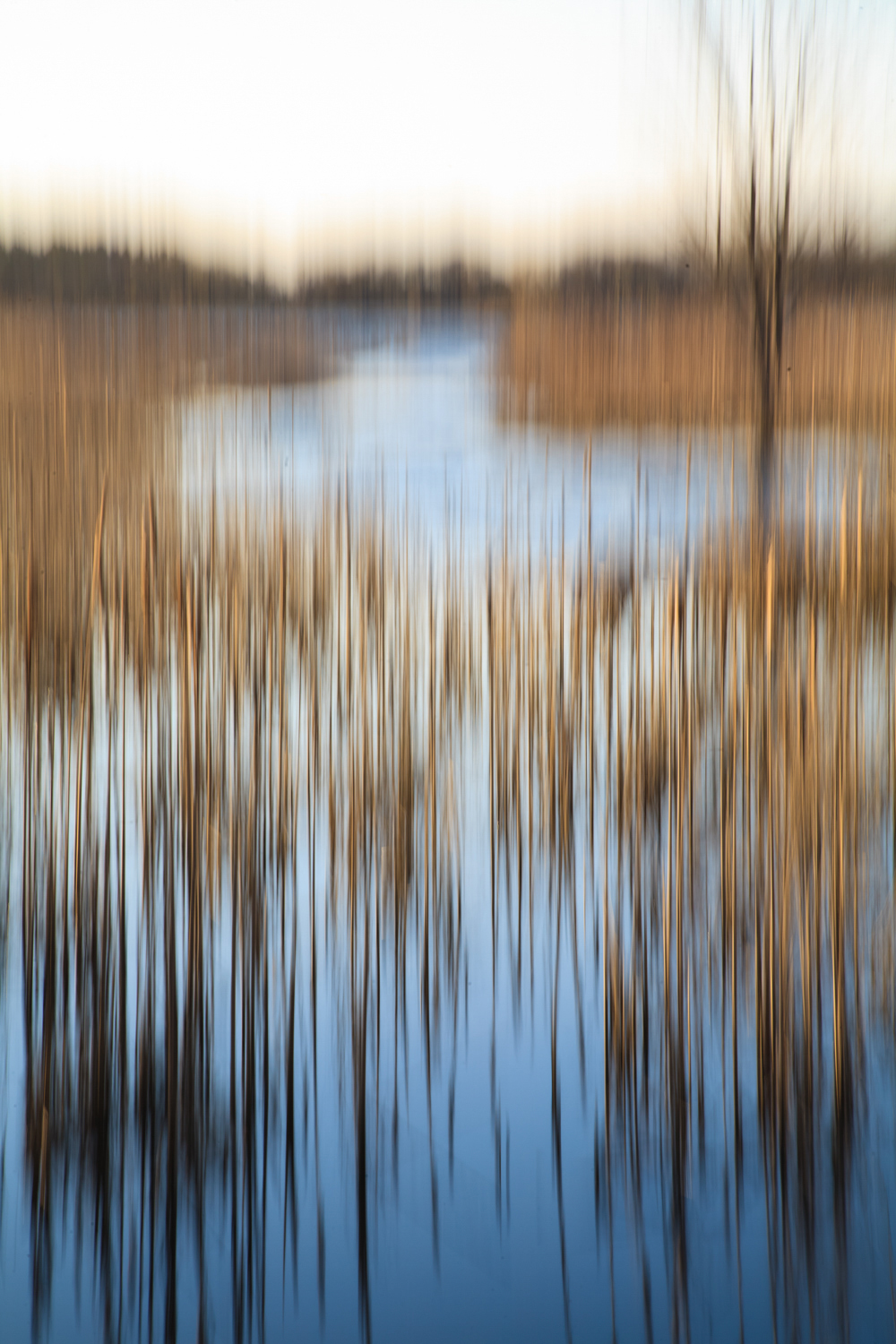 """""""Great Meadows"""", photography, price dependent on size etc (30"""" x 24"""" framed, $400)"""