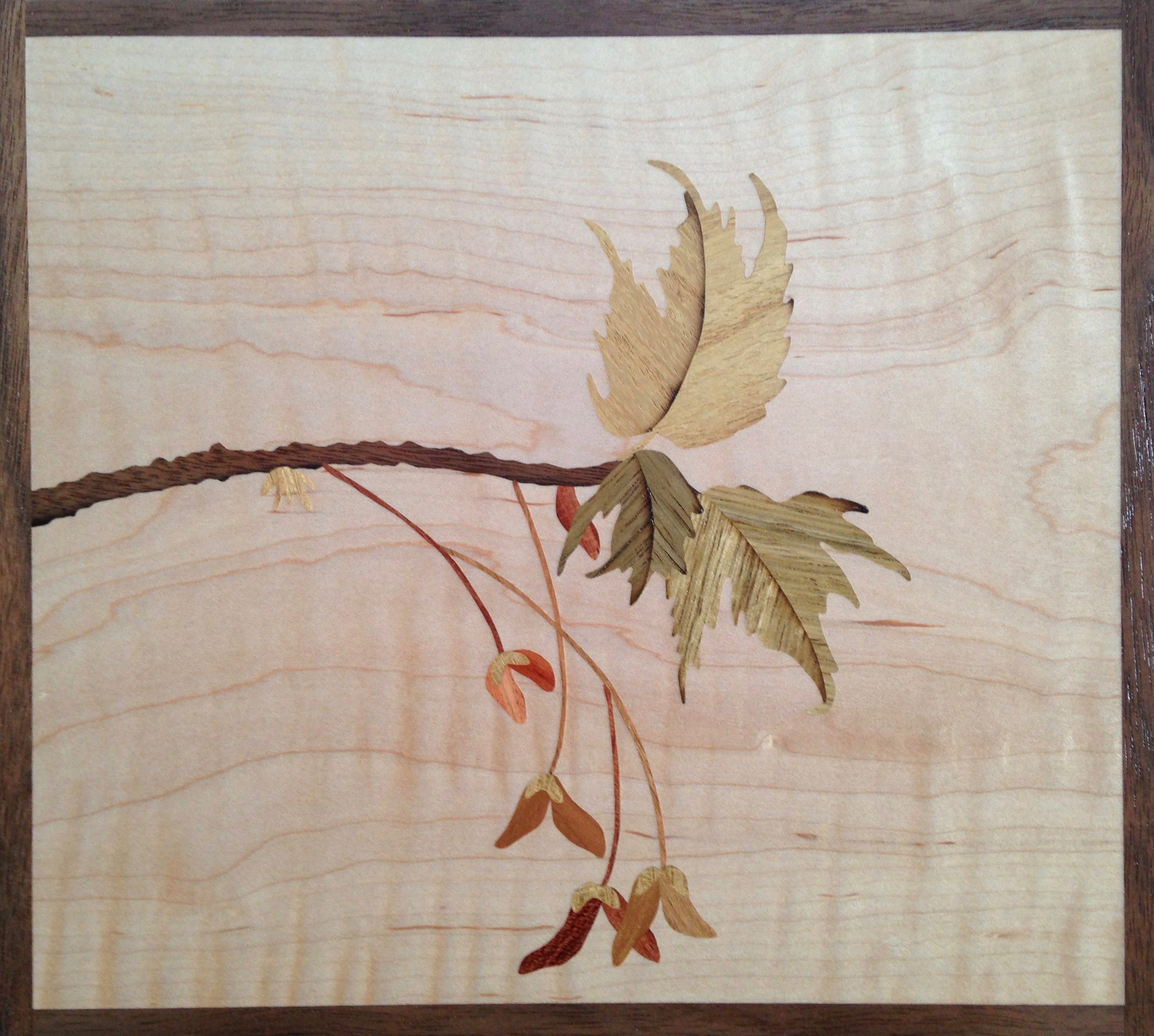 """""""Red Maple In Spring"""", wood, 7.5"""" x 8"""", $495"""