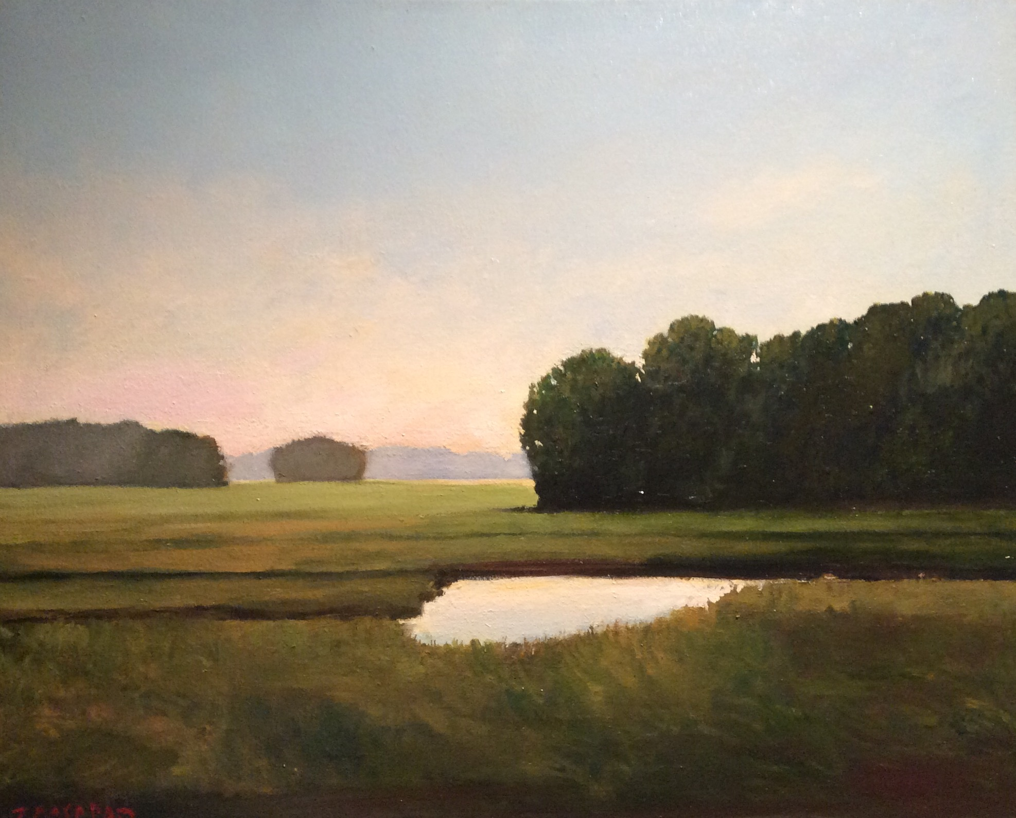 """Rough Meadows"", 17"" x 21"" (framed), $800"