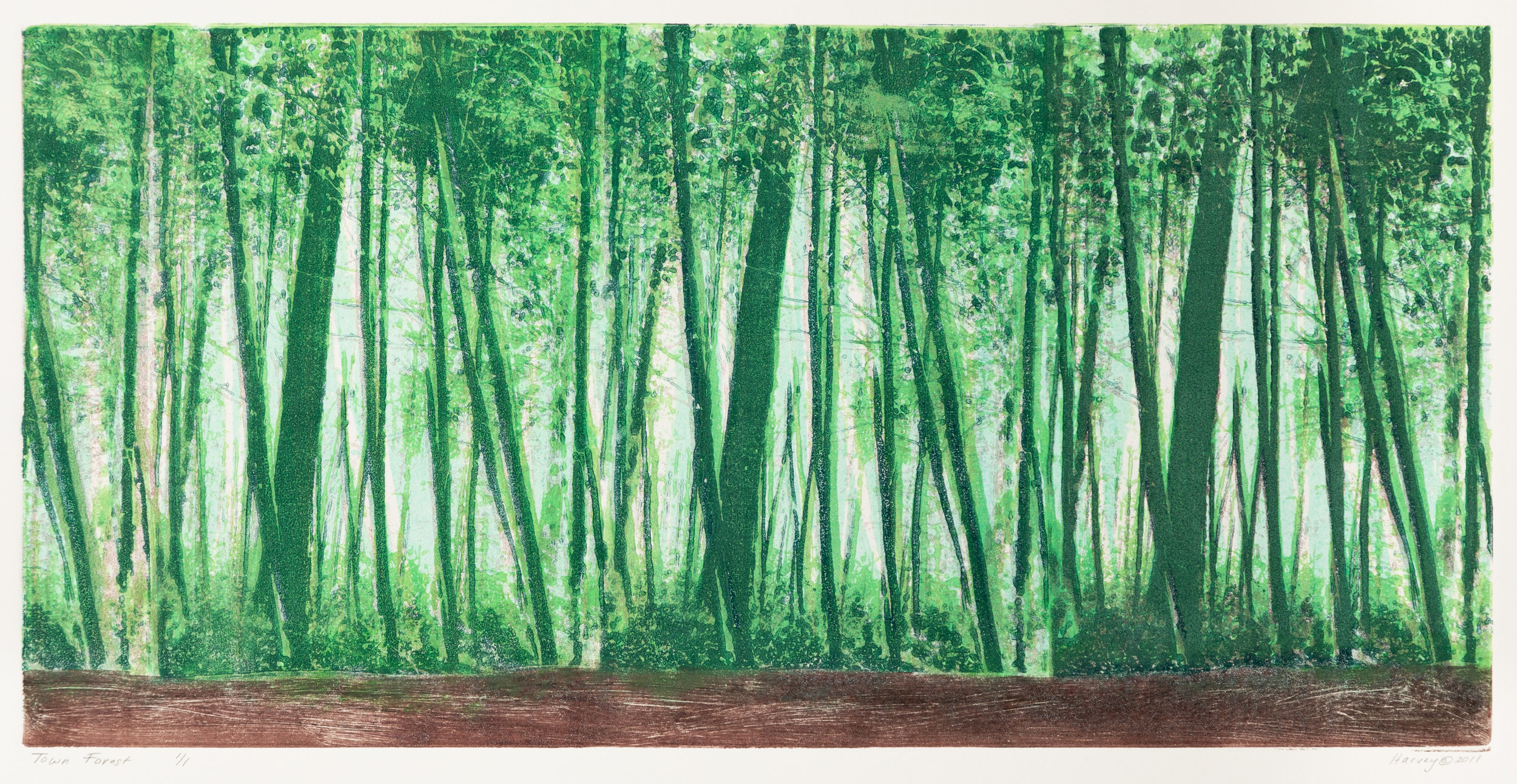 """Town Forest"", monoprint, 19.75"" x 31"", $500 (framed)"