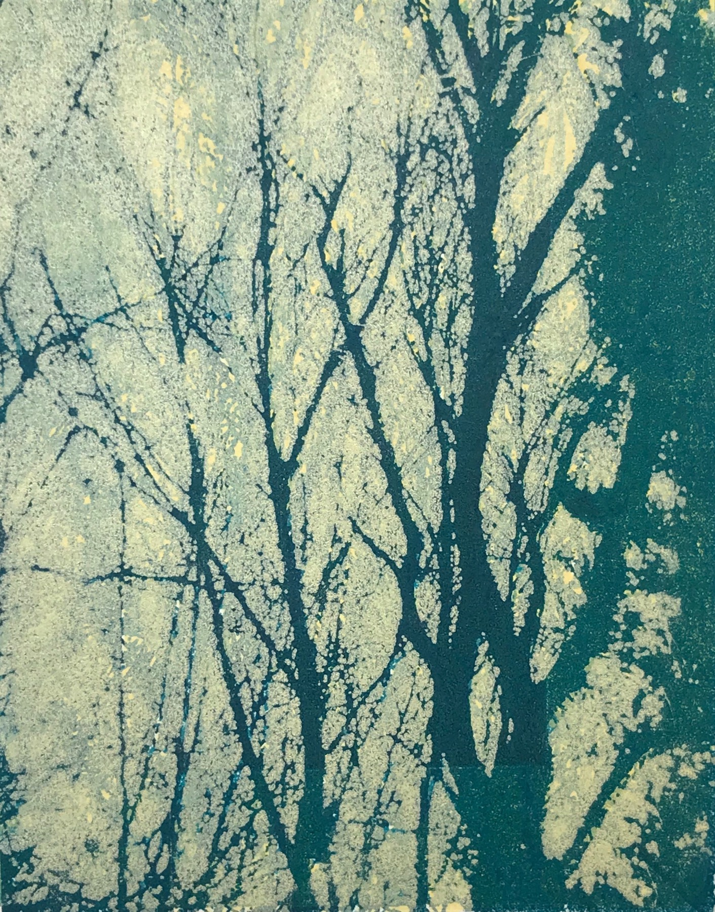 """Sundrenched Forest III"", monoprint, 10"" x 8"", $150 (unframed)"