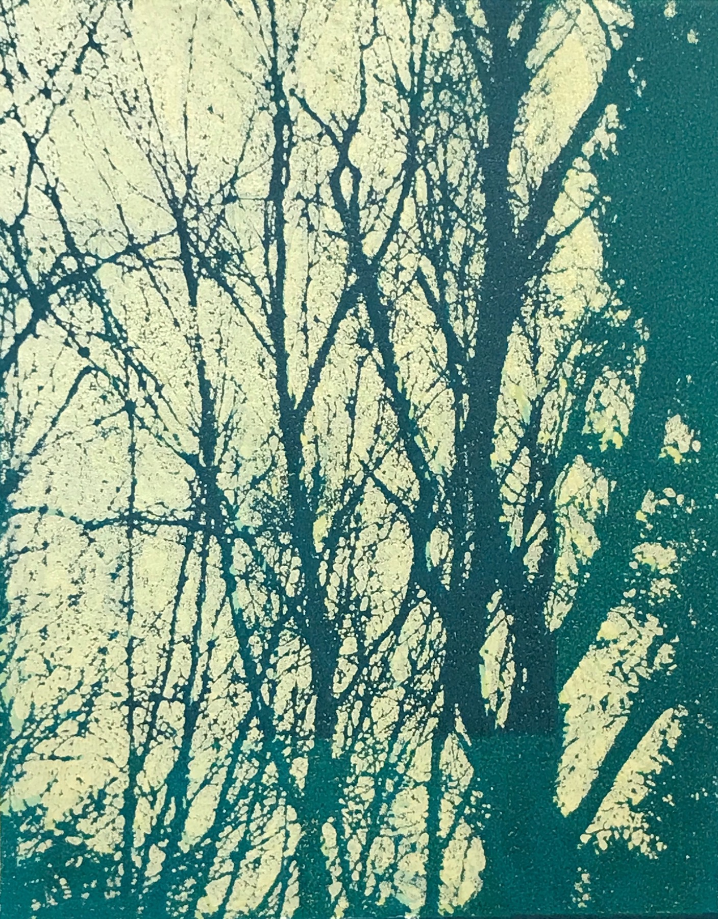 """Sundrenched Forest IV"", monoprint, 10"" x 8"", $150 (unframed)"