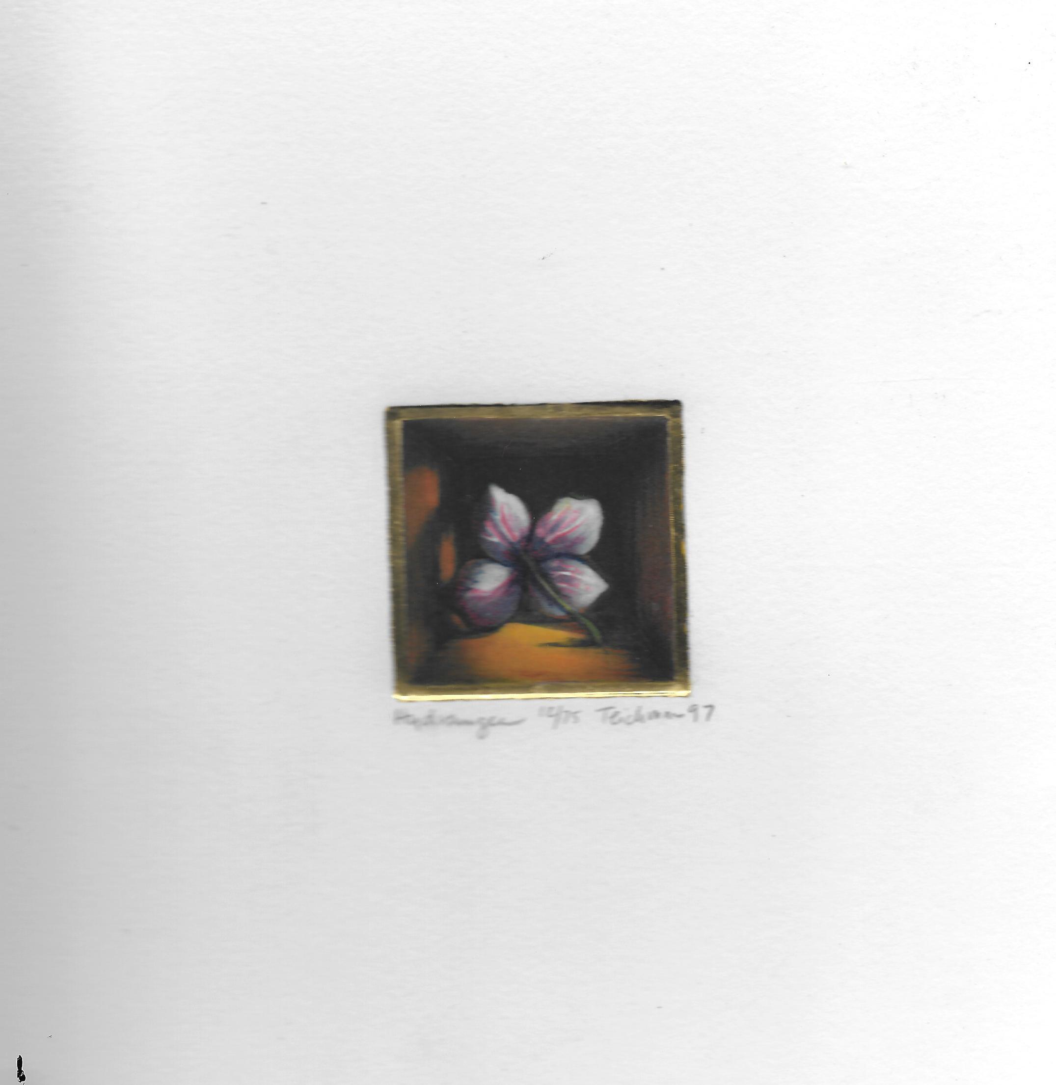 """""""Hydrangea"""",  multi-plate etching, $100 (unframed)"""