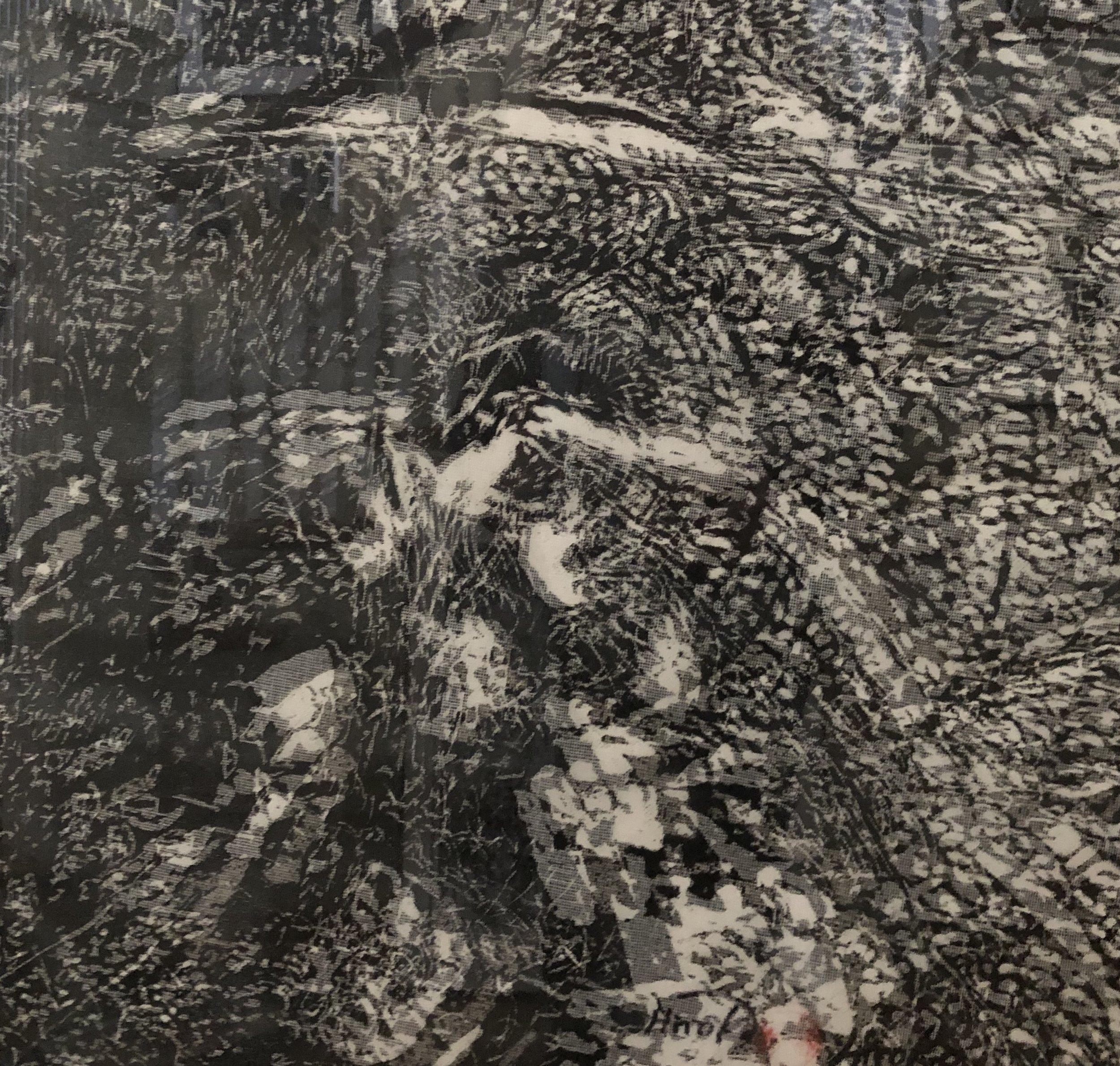 """""""Tree Odyssey 8"""", woodcut/layered"""