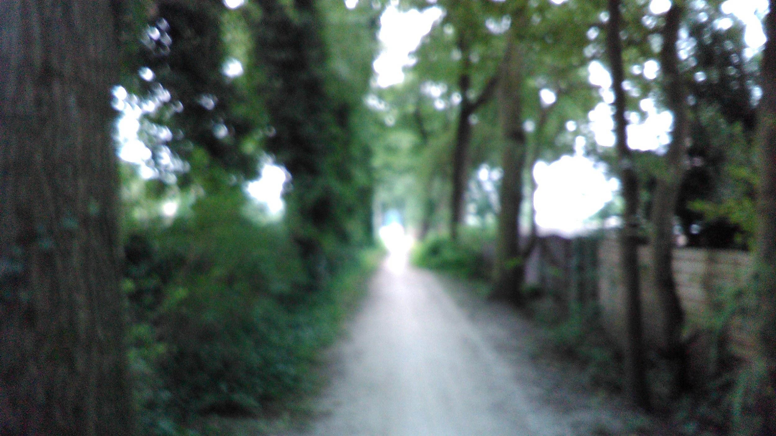 IMG_20160722_183759-1.jpg