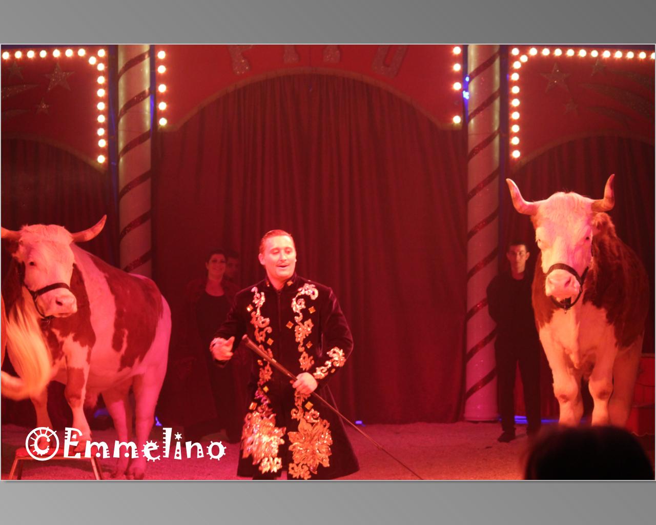 Circus Pipo 7.jpg