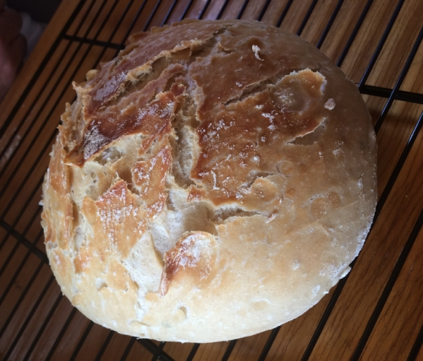 Steuart's first loaf of bread made in our oven!