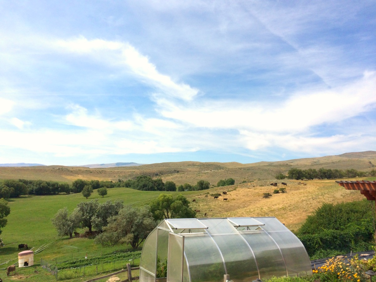 The backyard of our wonderful hosts in Lander, Wyoming!